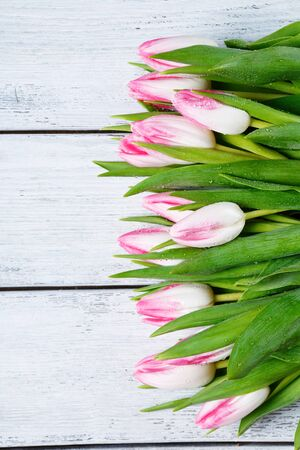 fresh pink tulips on boards, flowers photo