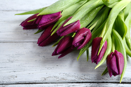 bunch: Purple tulips on the boards, spring Stock Photo