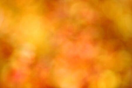 effect: autumn background, bokeh effect