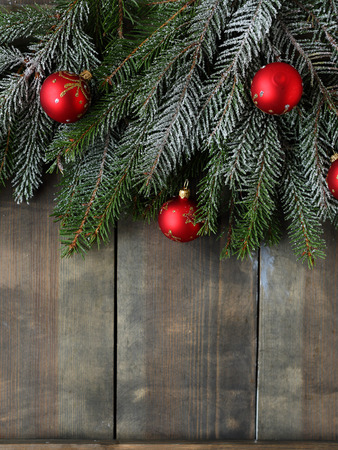 christmas backdrop: christmas backdrop with spruce