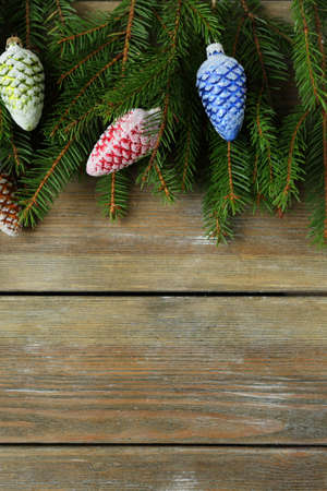 christmas backdrop: christmas natural backdrop with cone, top view