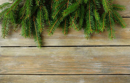 christmas backdrop: christmas backdrop with green branch, top view