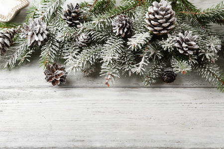 christmas rustic background with branch