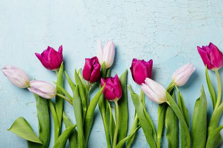 Blumen Hintergrund Standard-Bild - 52827317