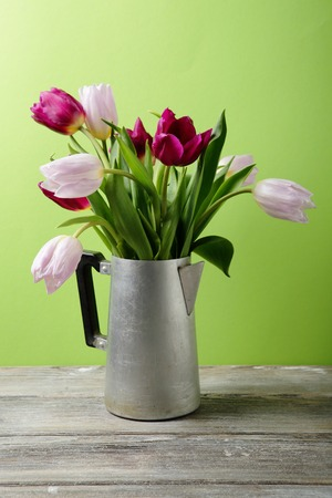 coffee pot: tulips in vintage coffee pot