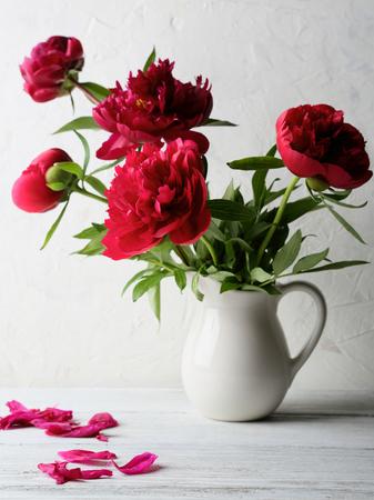 pfingstrosen: frische rote Pfingstrosen in Vase, Blumen
