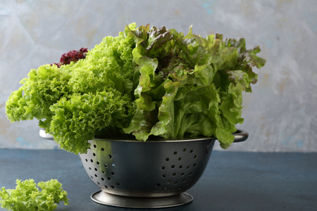 Organic salad leaves in colander, healthy food ingredients Stock Photo
