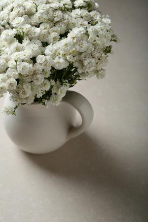 White small gypsophila  in vase, flowers Stock Photo