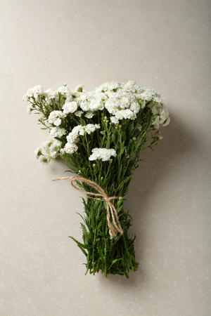 Baby breath flowers on concrete background, top view