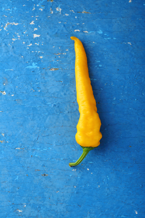capsaicin: One yellow pepper on old wood, food top view