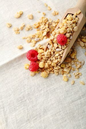Raw cereals and berry closeup, healthy food