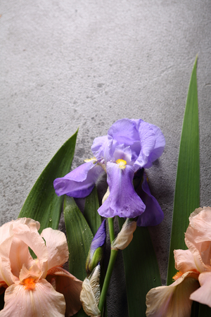 Natural iris flowers background, holiday concept