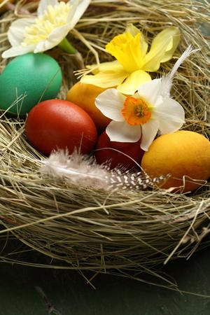 Easter eggs hay nest
