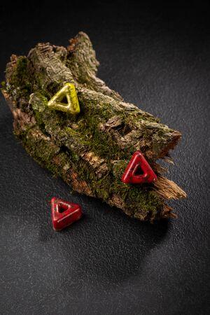 Chocolate bonbons set on wood bark