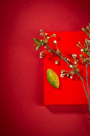 Chocolate bonbon on red background and cherry blossom 免版税图像