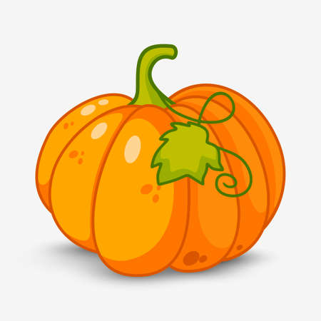 fruit stem: pumpkin Illustration