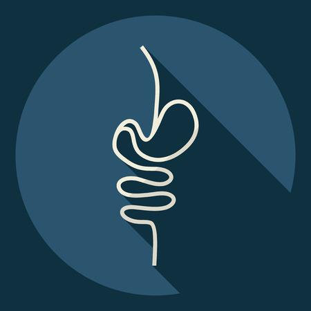 Flat modern design with shadow  Icon intestines