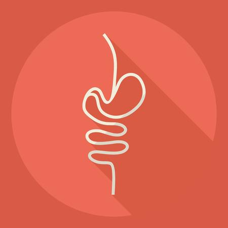 transverse colon: Flat modern design with shadow  Icon intestines