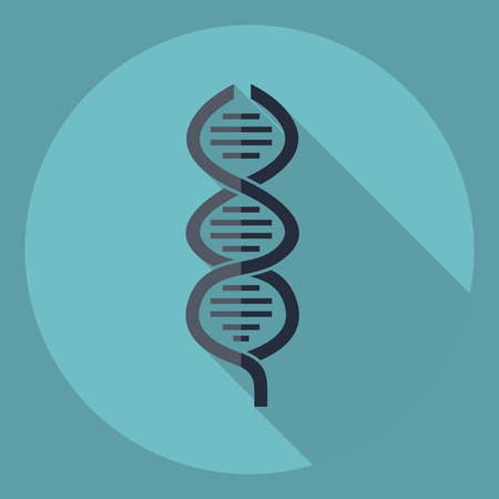 heredity: Flat modern design with shadow  Icon DNA Illustration
