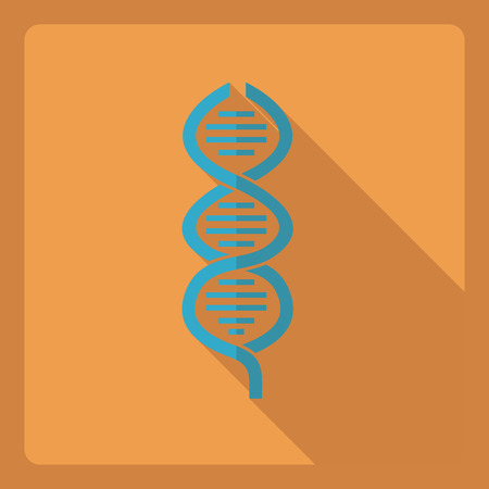assemblage: Flat modern design with shadow  Icon DNA Illustration