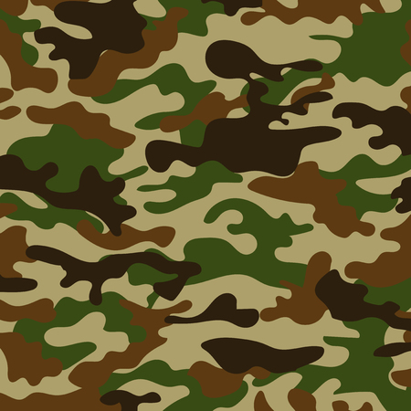 conceal: picture with a military color of the ground color khaki