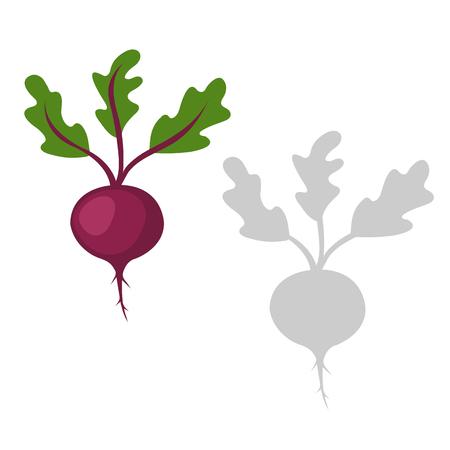 Vector Illustration vegetables Of Red beetroot Illusztráció