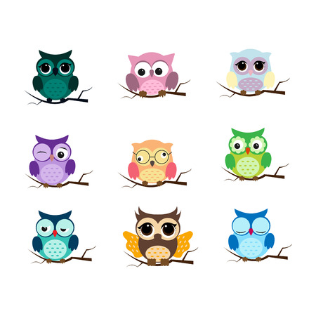 Group of birds. Owls night birds with big eyes. Colorful picture. Vector illustration 일러스트