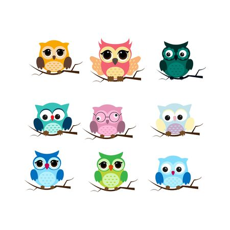 Group of birds. Owls night birds with big eyes. Colorful picture. Vector illustration