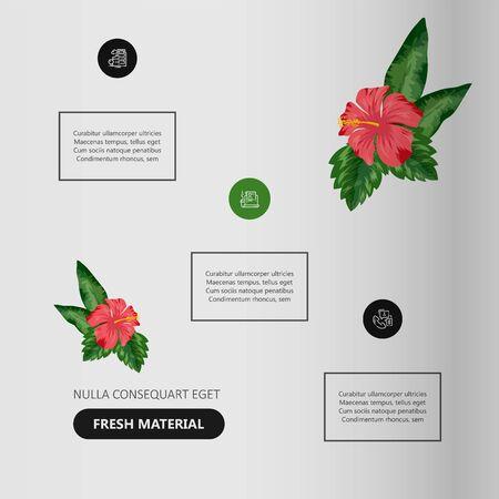 Tropical flowers classification plant description. Vector illustration Ilustração