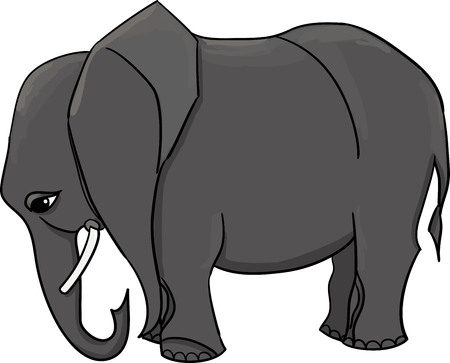 vector gray elephant without decorate