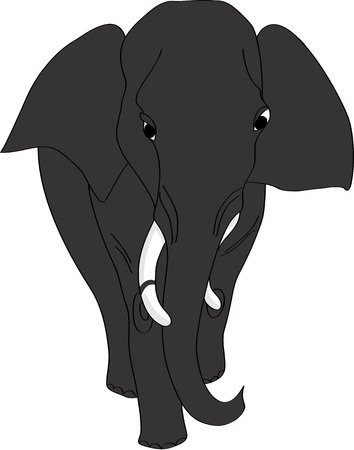elephant1_1 Illustration