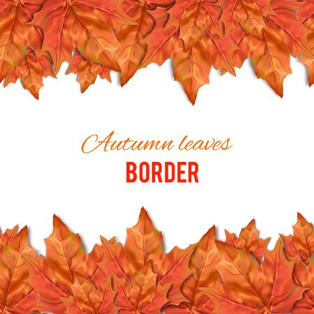 web site background: Autumn leaves seamless border. Texture for wallpaper, web site background, brochure, catalog, flyer, booklet