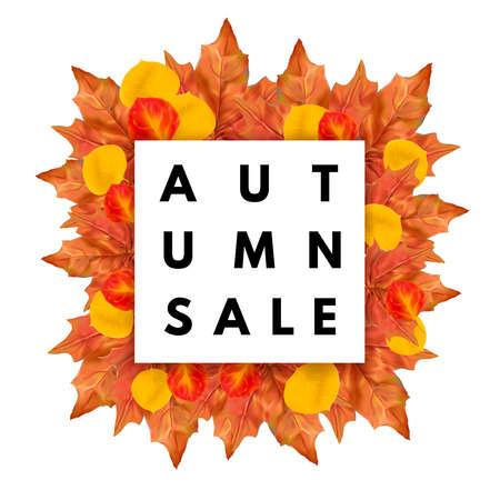fall leaves: Autumn fall sale . Autumn leaves frame.