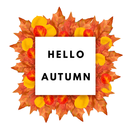 fall leaves: Hello autumn fall poster . Autumn leaves frame.