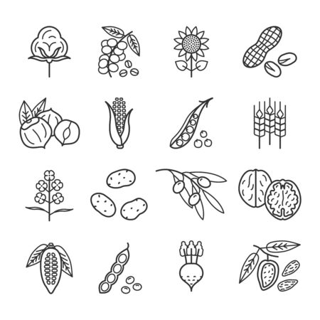 Agricultural commodities of vegetable origin linear icons set