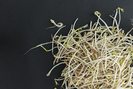 beansprouts: Scattered soybean sprouts on black background. Asian food. Stock Photo