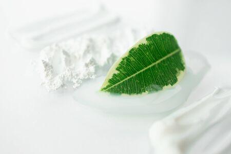 Frisches grünes Blatt und Schmierschönheitskosmetik mit selektivem Fokus. Feuchtigkeitscreme, durchscheinendes loses Pulver, Seife, Gesichtsmaske oder Reiniger einzeln auf weißem Hintergrund. Natürliches Hautpflegekonzept Standard-Bild