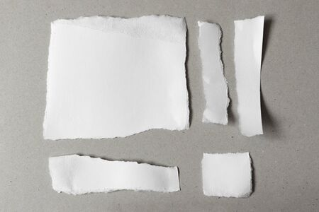 White ripped notes, set of pieces of torn different shapes paper on gray background