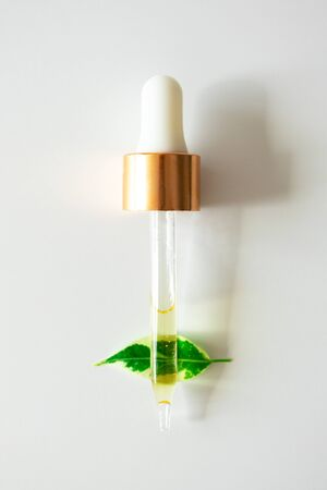 Serum in glass pipette on green plant leaf on white background, copy space. Skincare natural organic beauty product, top view