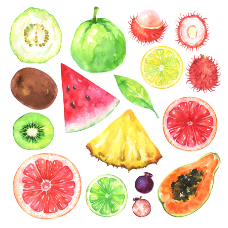Hand painted exotic fruits set. Watercolor collection of kiwi, watermelon, guava, rambutan, amelanchier, grapefruit, blood orange, lemon, papaya, pineapple, lime and green leaf isolated on white background. Stockfoto