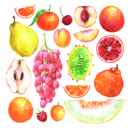 Hand painted fruits set. Watercolor collection of cherry, mandarin, apricot, ugli fruit, quince, orange, raspberry, ximenia, nectarine, muskmelon, horned melon, grapes isolated on white background Imagens