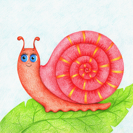 hands drawn picture of a snail on a green leaf by the color pencils