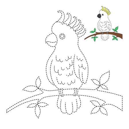 Vector drawing worksheet for kids Simple educational game for kids. Illustration of cockatoo sitting on branch for toddlers