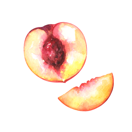 hand painted watercolor illustration of slices of peach isolated on white background Standard-Bild - 118965889