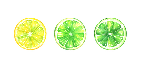 Hand painted watercolor illustration of slices of different lemones isolated on white background Standard-Bild - 118965892