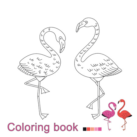 Vector illustration of two flamingos for coloring book. Simple educational game for kids Standard-Bild - 118965904