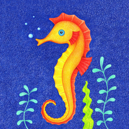 hand drawn picture of seahorse Standard-Bild - 118965912