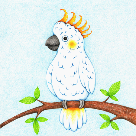 illustration of white cockatoo sitting on branch Standard-Bild - 118965919