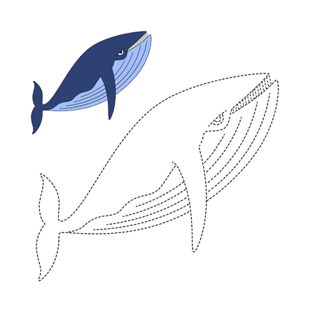 Vector illustration of humpback whale for coloring book Standard-Bild - 118850820