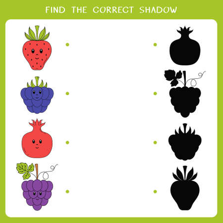 Find the correct shadow for fruits and berries. Vector worksheet of simple educational game for kids